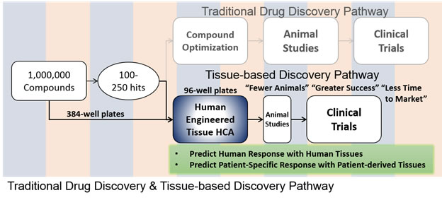 Drug Disc Path
